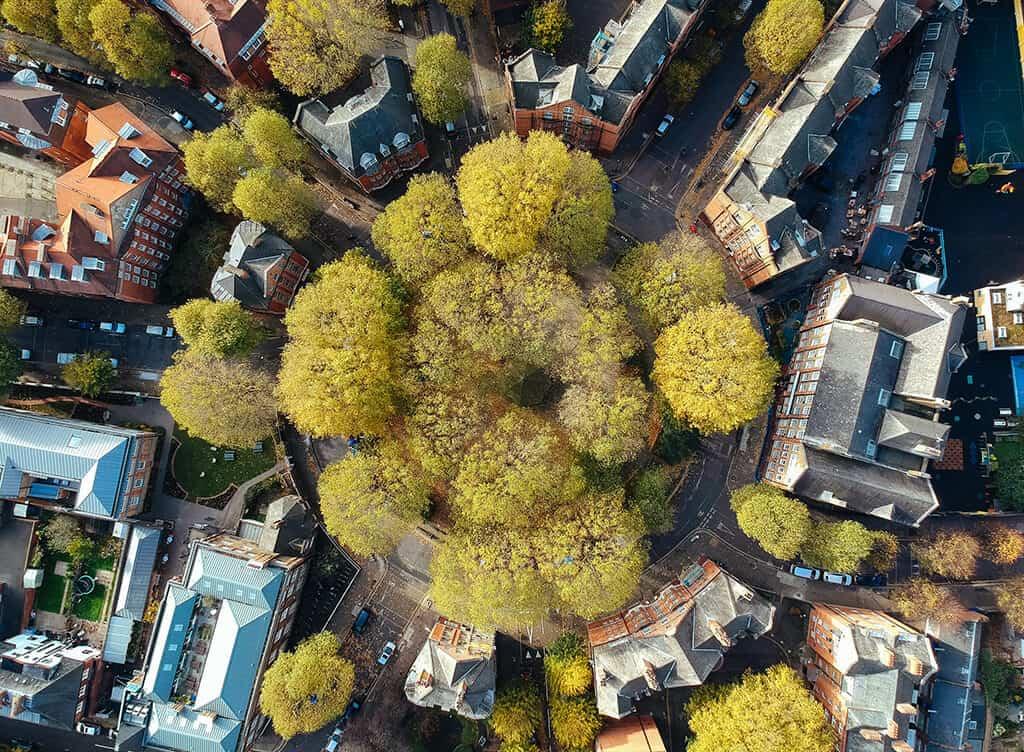 cartiere din londra